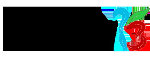 Truway Transparent Logo